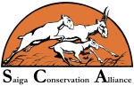 Saiga Conservation Alliance