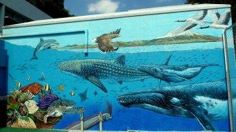 Rory McCann hand painted mural wildlife art school painting (112)