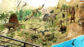 Rory McCann hand painted mural wildlife art school painting (12)