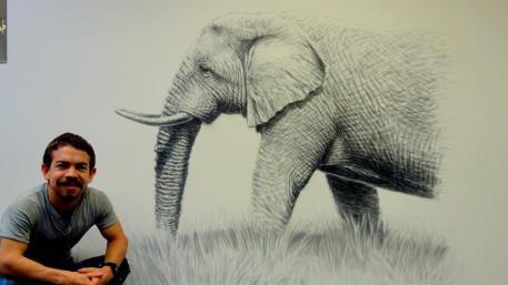 Rory McCann hand painted mural wildlife art school painting (19)