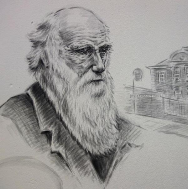 Rory McCann hand painted mural wildlife art school painting (27)