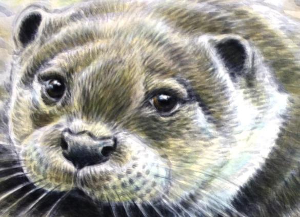 Rory McCann hand painted mural wildlife art school painting (31)