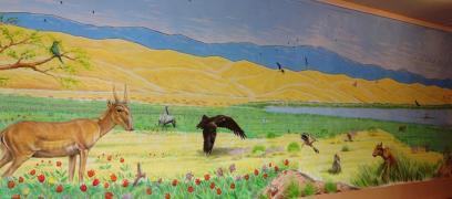 Rory McCann hand painted mural wildlife art school painting (36)