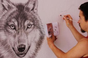 Rory McCann hand painted mural wildlife art school painting (37)