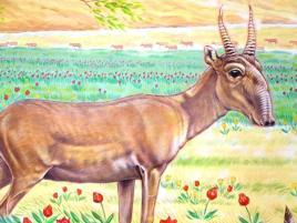 Rory McCann hand painted mural wildlife art school painting (49)
