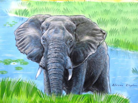 Rory McCann hand painted mural wildlife art school painting (61)