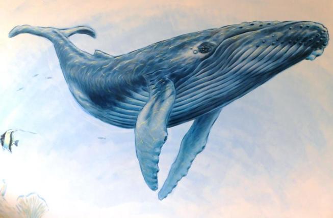 Rory McCann hand painted mural wildlife art school painting (62)