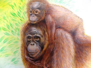Rory McCann hand painted mural wildlife art school painting (63)