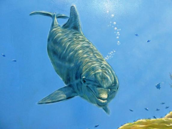 Rory McCann hand painted mural wildlife art school painting (69)