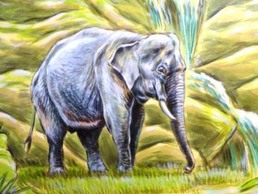 Rory McCann hand painted mural wildlife art school painting (85)